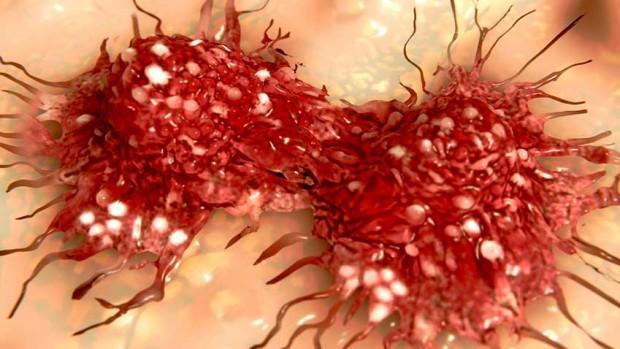 Препарат против алкоголизма помогает побороть рак