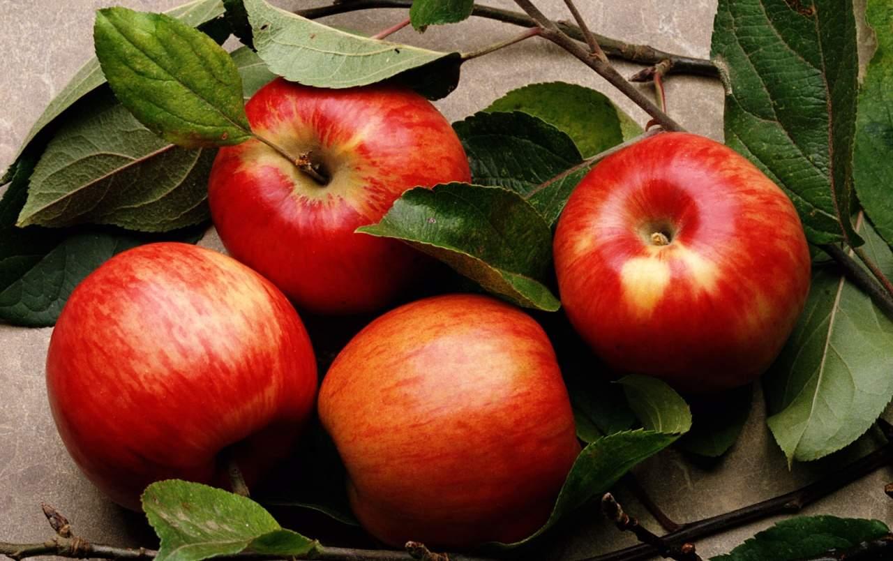Врачи рассказали всю правду о пользе яблок для здоровья