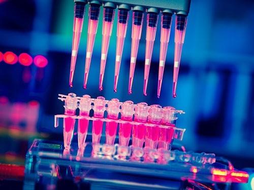 Иммунитет взаймы: в лечении рака обещают скорую революцию