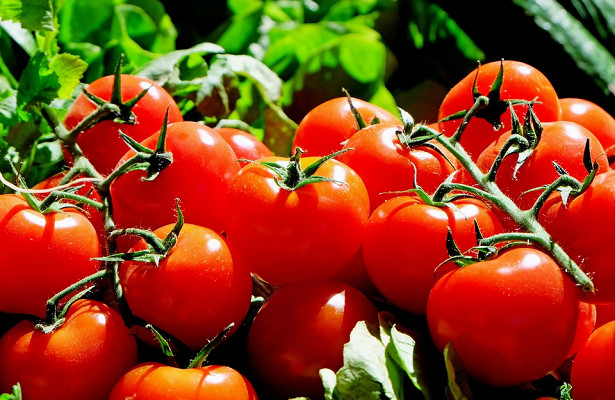Медики назвали овощи и фрукты против рака
