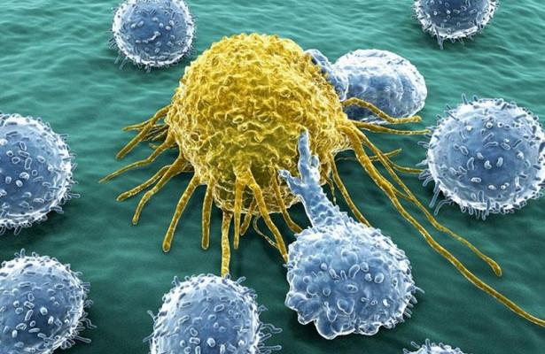 Ученые: здоровый образ жизни не спасает от рака