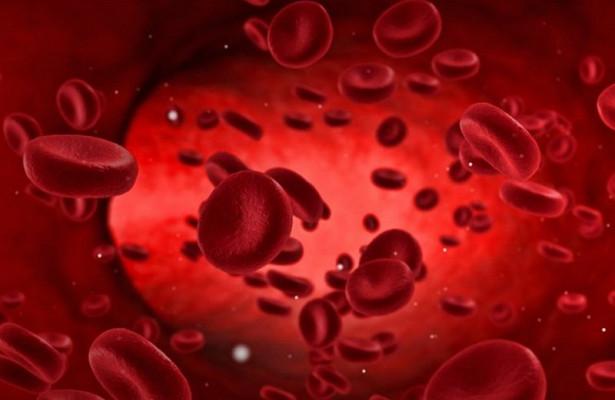 Суперкровь поможет лечить самые тяжелые опухоли