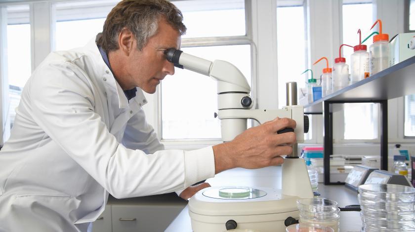 Организм научили уничтожать рак