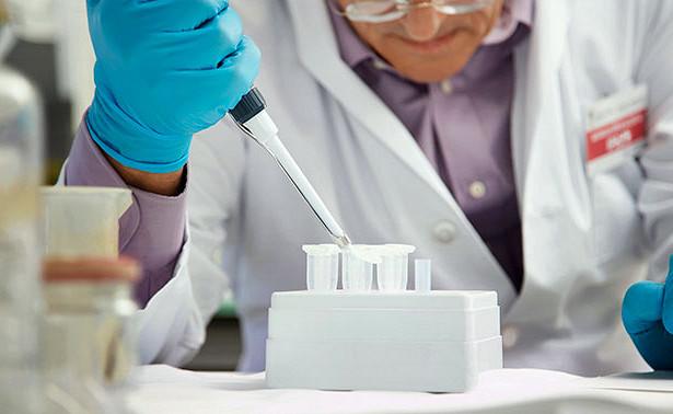 Ученые нашли средство для профилактики рака и диабета