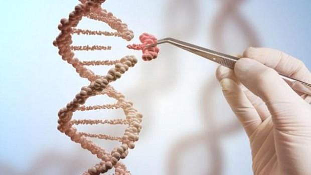Революционный инструмент для редактирования генов может вызвать рак