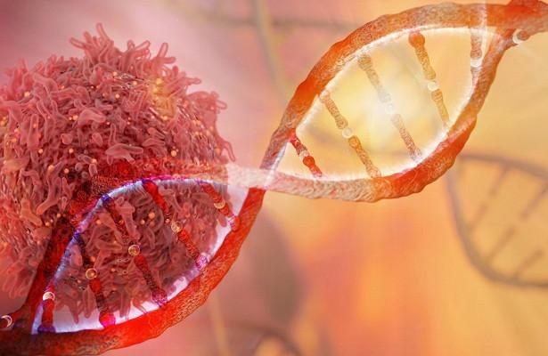 Ученые довели раковые клетки до самоубийства