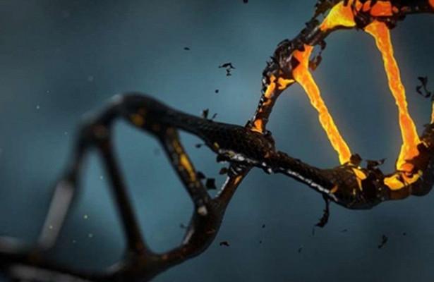 Обнаружена причина развития неизлечимого рака груди