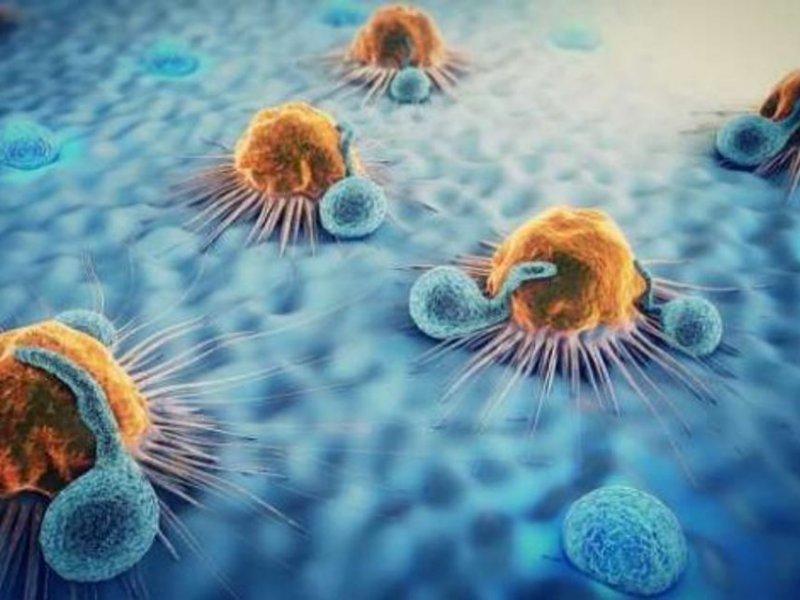 Самые вредные и опасные мифы о раке