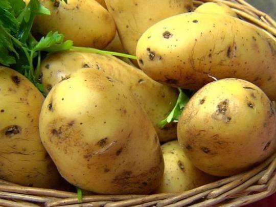 Стало известно, какая картошка снижает риск рака