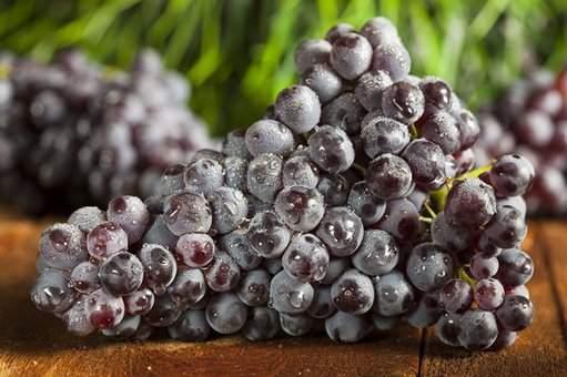 Врачи рассказали, какой фрукт может защитить от рака легких