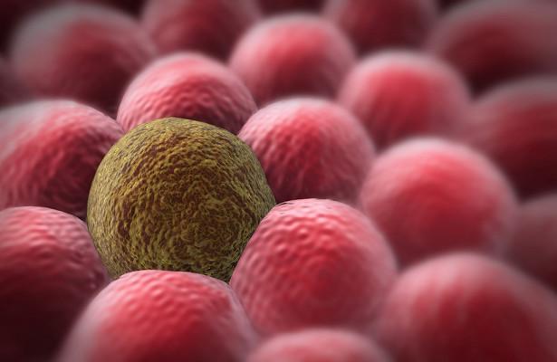 Ученые научат рак самоуничтожаться