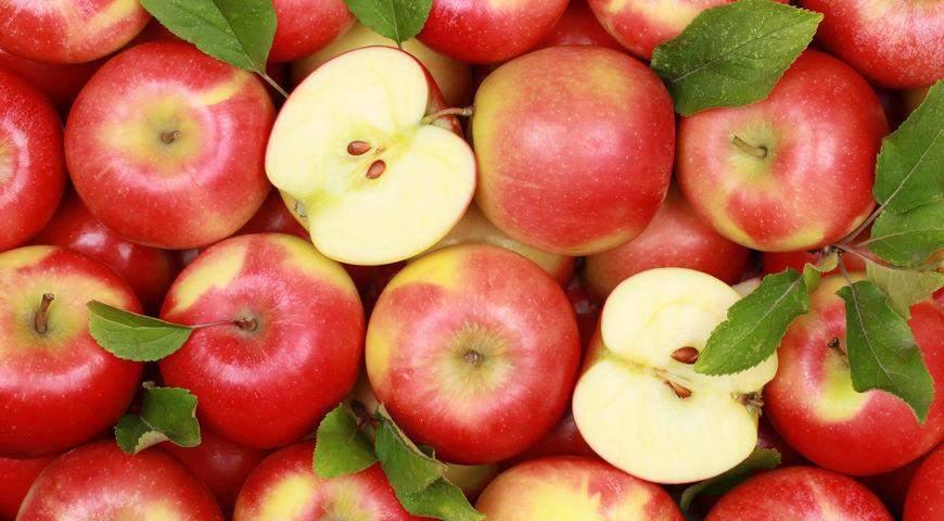 Медики рассказали, какой фрукт может защитить от рака кишечника