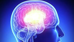 Нейросети — передача информационных данных из мозга в мозг
