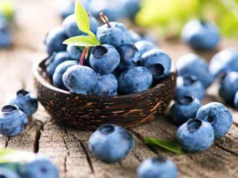 5 продуктов питания, снижающих риск рака