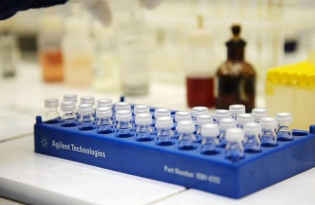 Трансплантация иммунных клеток поможет победить рак