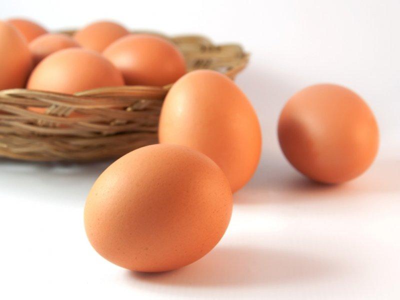 Лекарства от рака вырастят в куриных яйцах