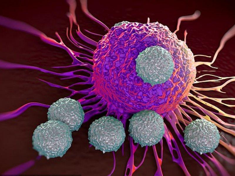 Лекарство «троянский конь» убивает рак по-новому