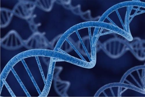 Медики нашли разницу в развитии рака у женщин и мужчин