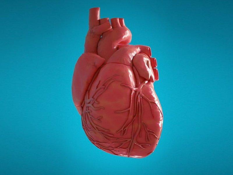 Кому грозит рак сердца?