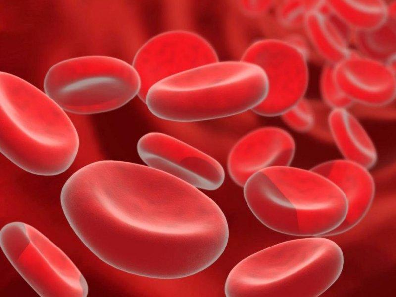 Российские ученые нашли способ уничтожать раковые клетки с помощью донорской крови