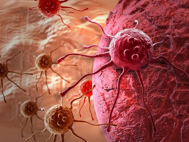 Главной причиной рака ученые назвали ослабление иммунитета