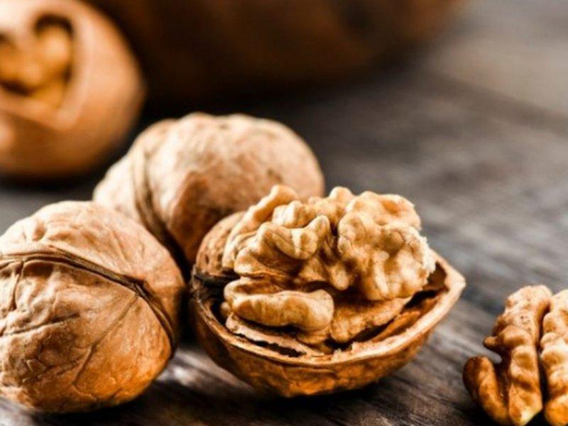 Употребление грецких орехов способствует подавлению развивающегося рака груди