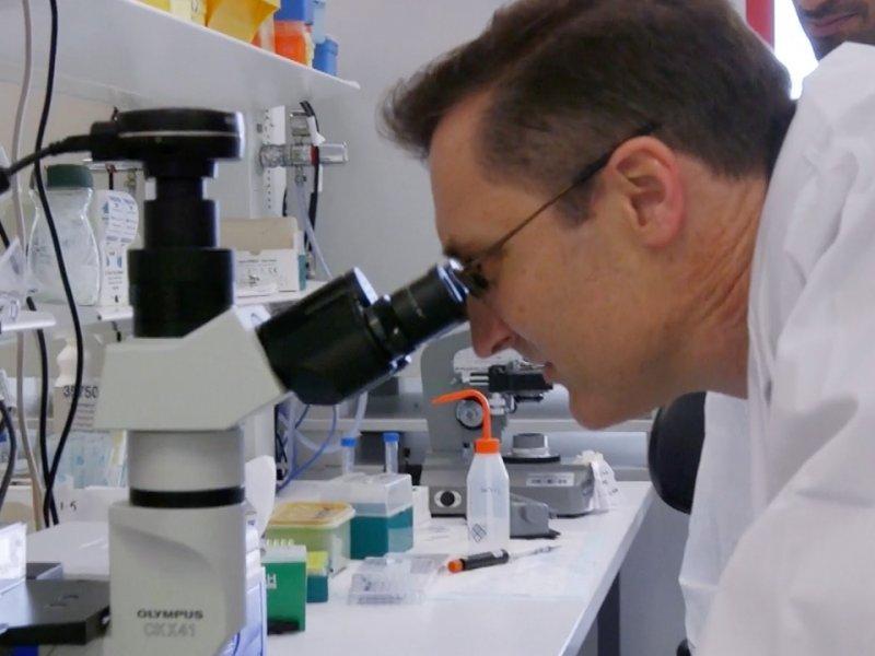 В Сиднее создали новую методику лечения рака крови