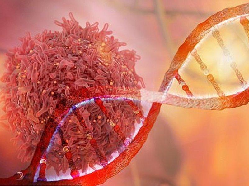Иммунотерапия побеждает рак, но вызывает диабет