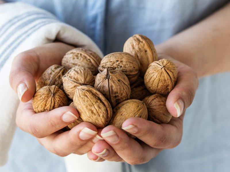 Грецкие орехи помогают снизить рак груди наполовину – эксперимент