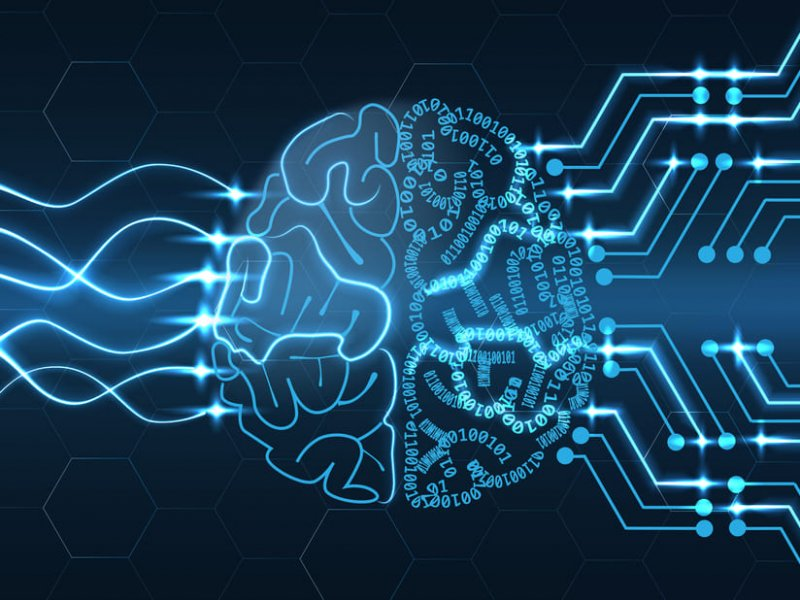 В Новосибирске искусственный интеллект научат диагностировать опухоли мозга