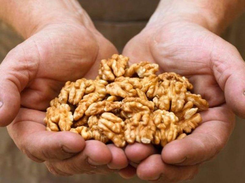 Раковые клетки молочной железы гибнут из-за грецких орехов