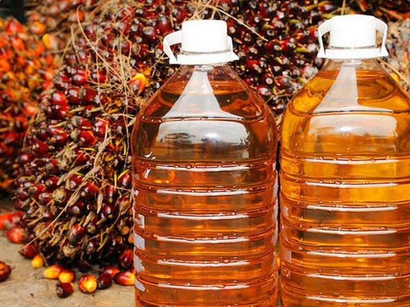 Россиянка с лимфомой попросила Путина запретить «вызывающее рак» пальмовое масло