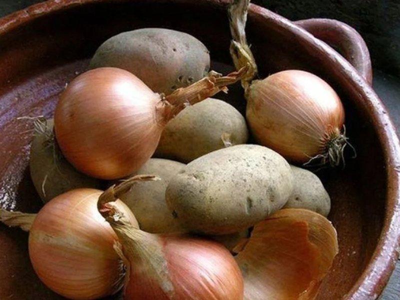 Картофель и лук повышают защиту организма от рака желудка