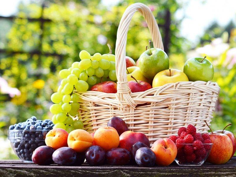 Меньше жира и больше фруктов – диета, которая увеличивает выживаемость при раке груди