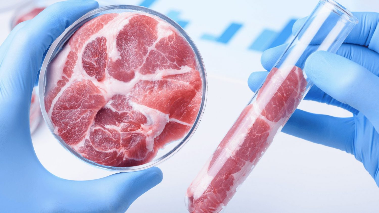 Найден новый способ выращивать искусственное мясо