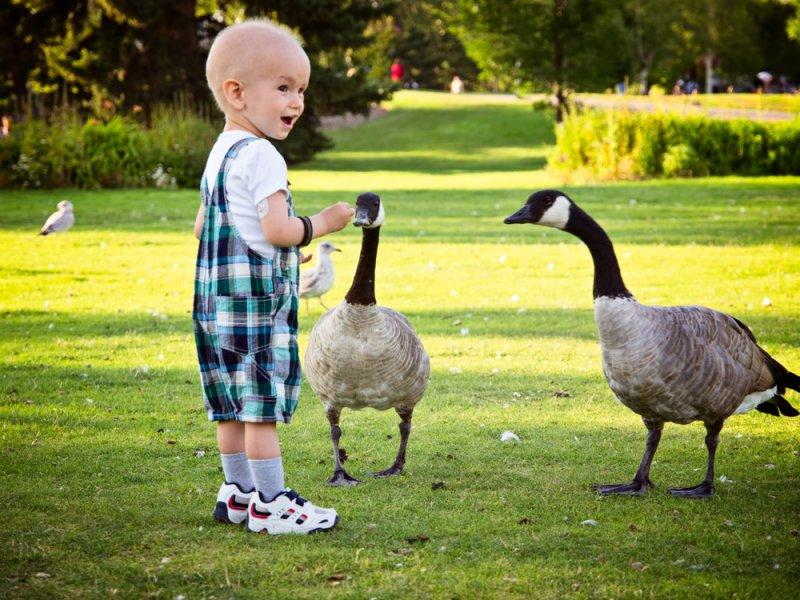 4 главных вида детского рака и их симптомы