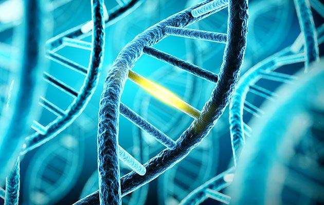 Генетическая предрасположенность к раку молочной железы