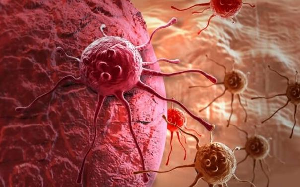 Определен продукт, который способен предотвратить рак мозга