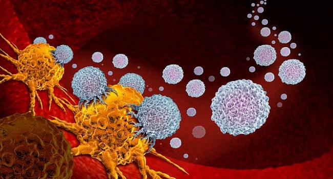 Низкокалорийная диета способна изменить ход лечения рака