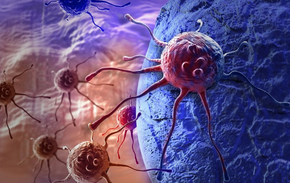 Названа диета, помогающая в борьбе с раком