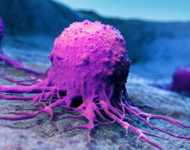Врач назвал первые симптомы развития онкологии