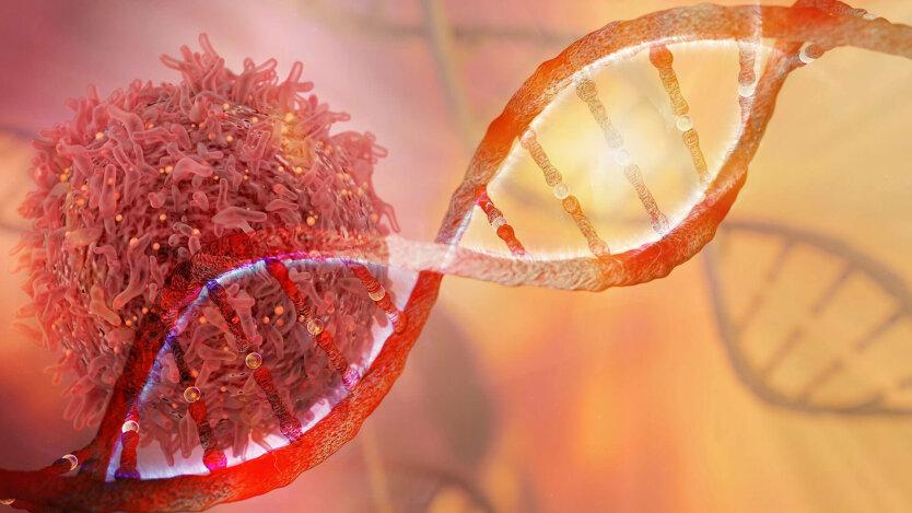 Назван способ спровоцировать рак кишечника