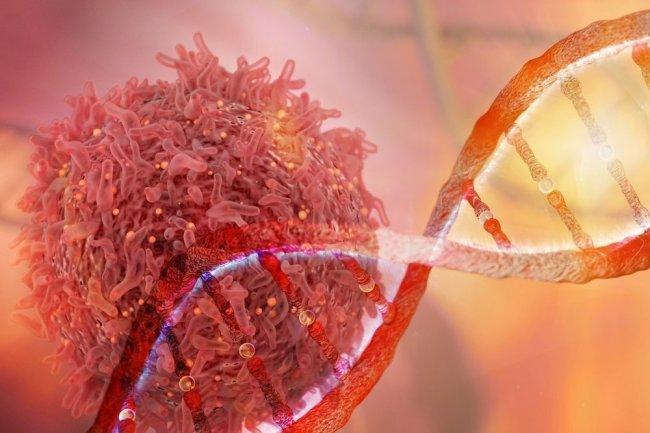 Три органа, наиболее подверженных раку