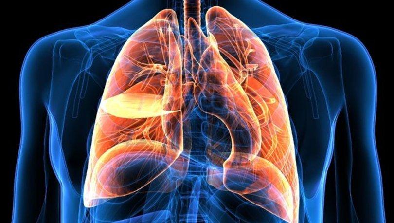 Установлена причина возникновения рака легких у курильщиков