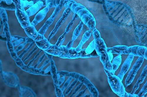 Генетики нашли мутацию, которая делает некоторых людей беззащитными перед лицом рака