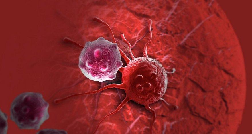 Названы привычки, повышающие риск заболеть раком