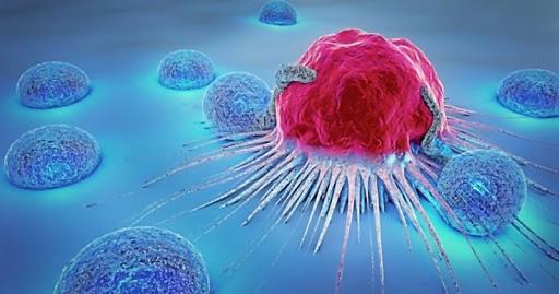 Что такое рак: причины, основные симптомы и лечение онкологии
