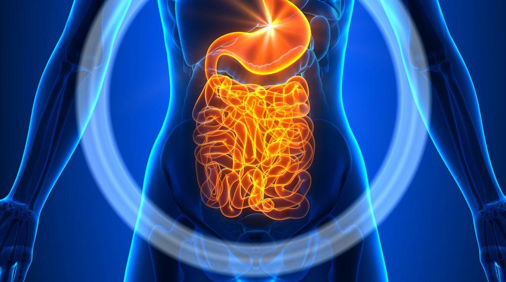 Врачи: вздутие живота — симптом рака кишечника