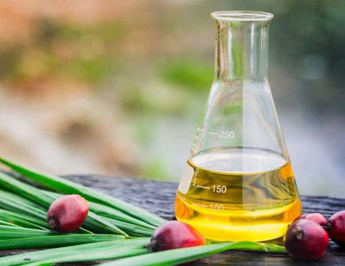 Регулярное употребление пальмового масла может спровоцировать рак