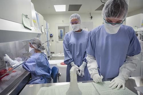 Онкологи обнаружили уникальное по силе противораковое средство